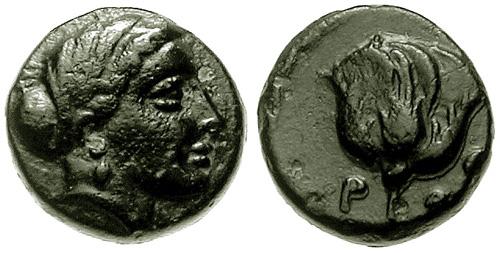 Bronce griego (¿Rosas o Massalia?) SNGCop_750.1